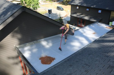 Living Roof_Clean