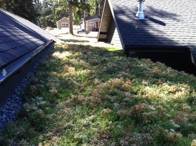 Living Roof_Complete